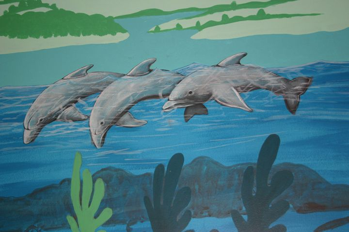 Playful dolphins - Marlena Art
