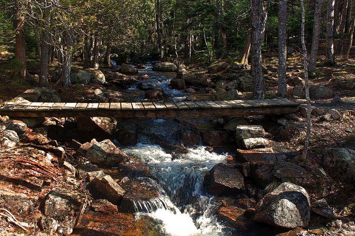 a stream in Maine - peggy loughlin