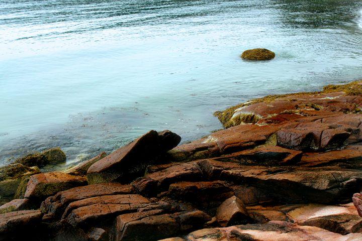coast of swans island - peggy loughlin