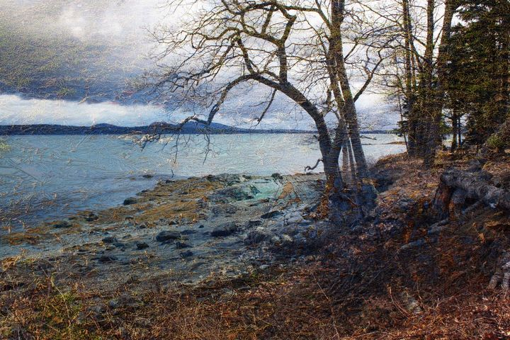 Tremont maine - peggy loughlin