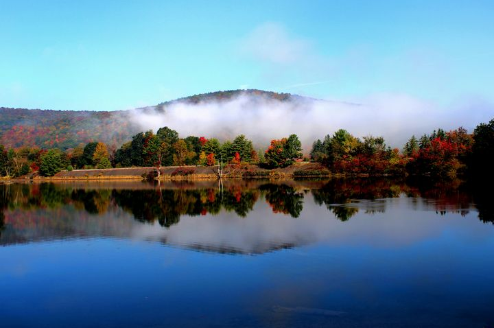 morning mist - peggy loughlin