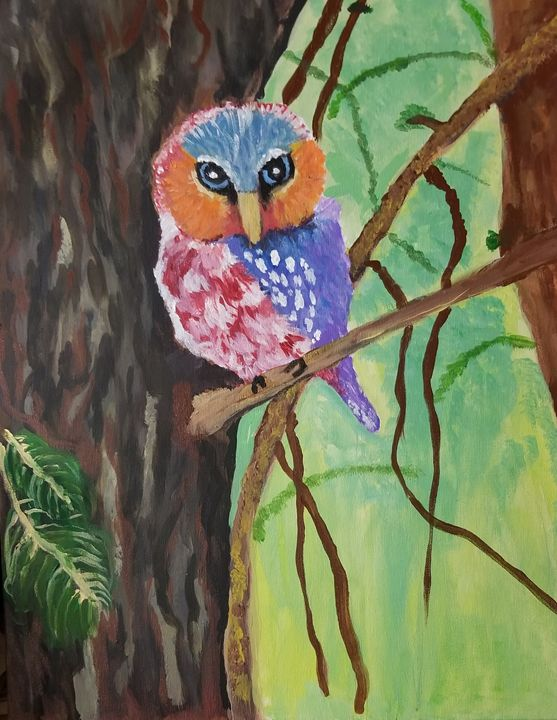 Owl Territory - Hidden Code Studios