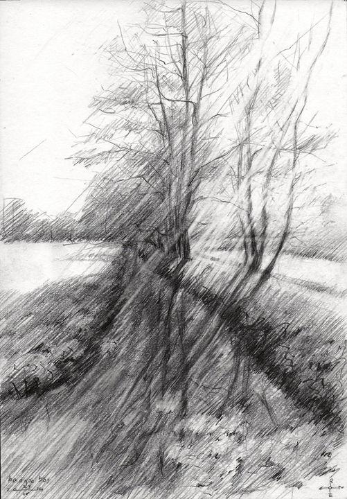 The Hague forest - 23-04-14 - Corné Akkers art works