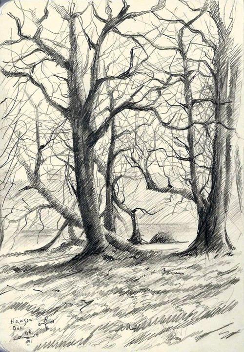 The Hague forest - 09-03-14 - Corné Akkers art works