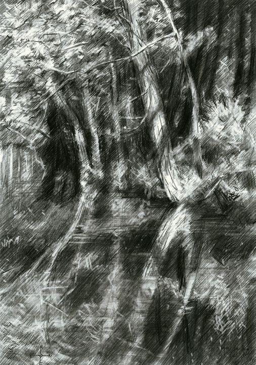The Hague Forest - 23-06-15 - Corné Akkers art works