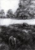 Original, drawing