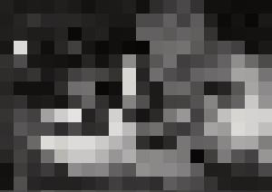 Roundism – 30-01-20 - Corné Akkers art works
