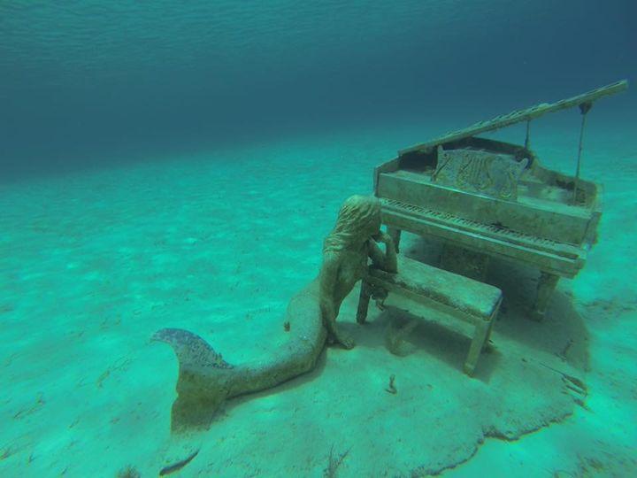 Under the sea - Dahleen