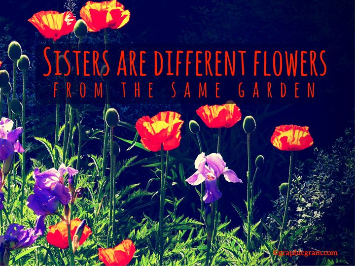 Sisters Are Different Flowers - Graphic Gram