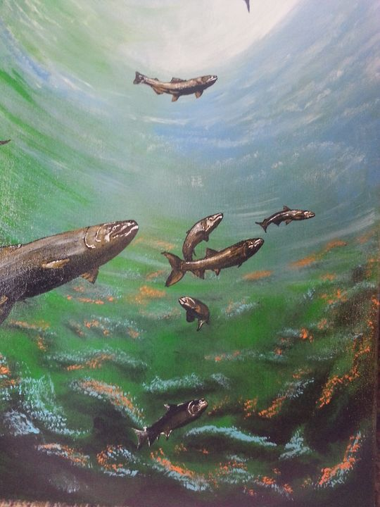 Salmon of the Sea - Derek Irby Collection