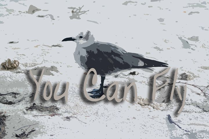 You Can Fly - The Soul Messages by Jodi