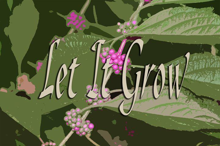 Let It Grow - The Soul Messages by Jodi