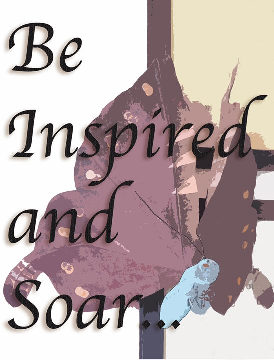 Be Inspired and Soar - The Soul Messages by Jodi