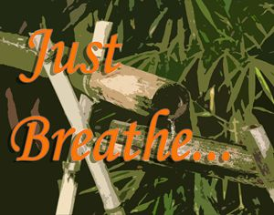 Just Breathe - The Soul Messages by Jodi
