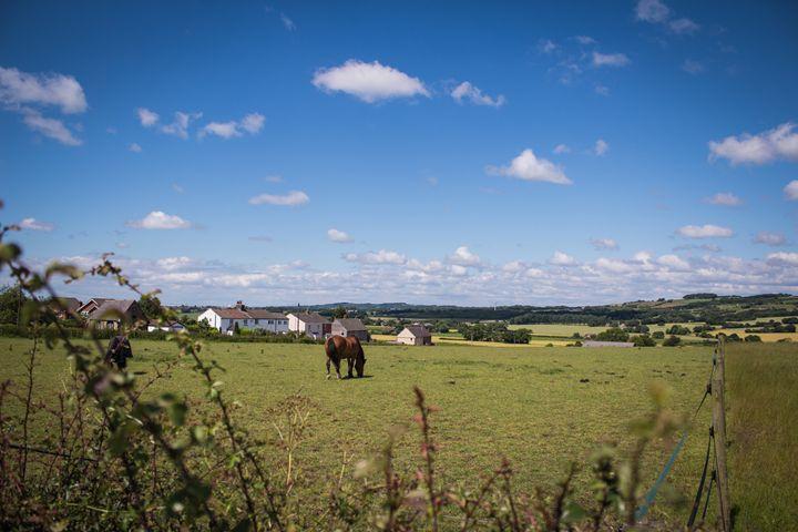 Horse sky - David Jones