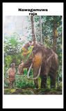 Asian elephant in temple