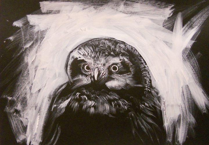 OWL - SÏRÏ