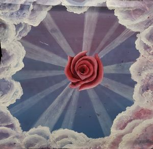 When the Rays A'rose