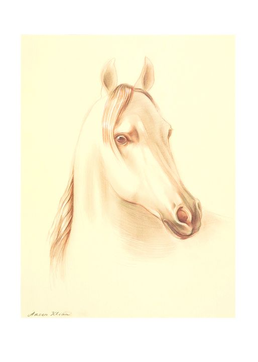 Thinking Horse - Cosming Inspiration