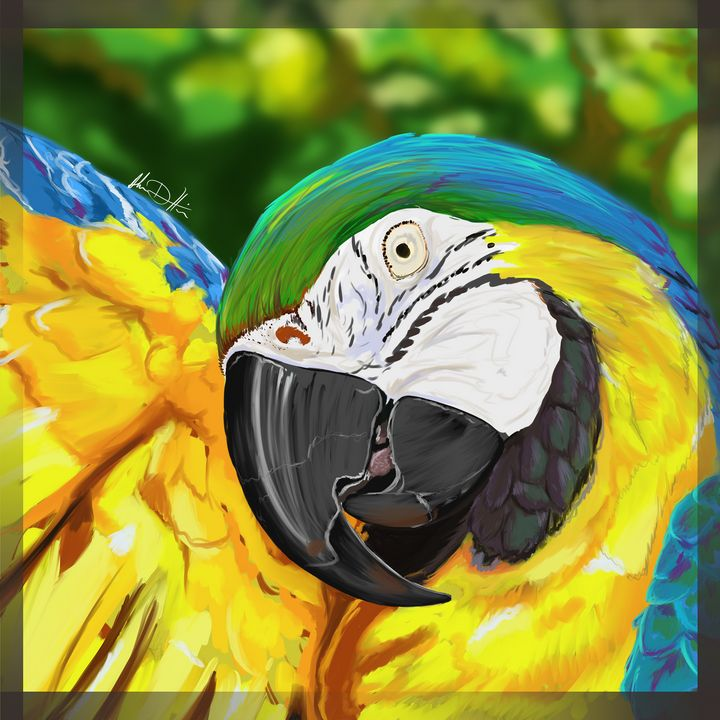 The Vibrant Macaw - Inspirational Wonders of Nature, by ArceeTheVixen