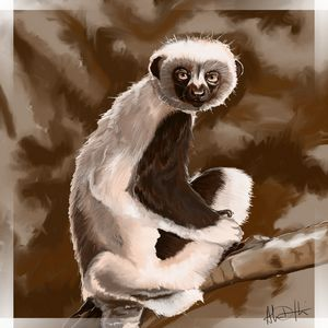 Could It Be... Zaboomafoo?