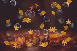 Dreamy autumn- Digital design