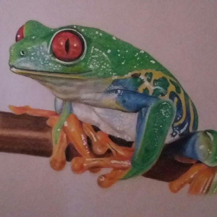 Colour frog - debz drawings