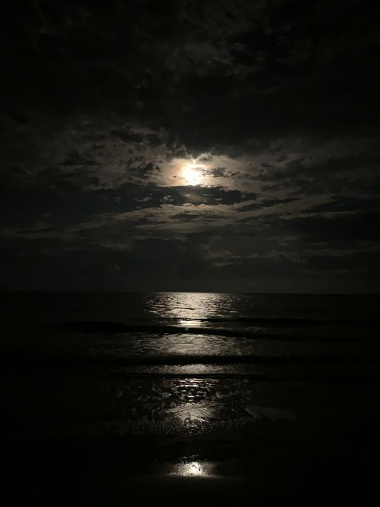 The Moon Guiding the Sea - Kerri Caprice Parker