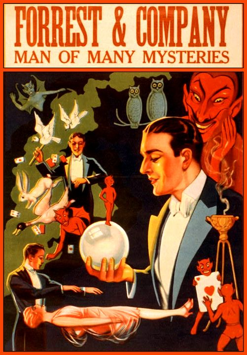 Forrest and Company Man of Mysteries - LukeAhearn