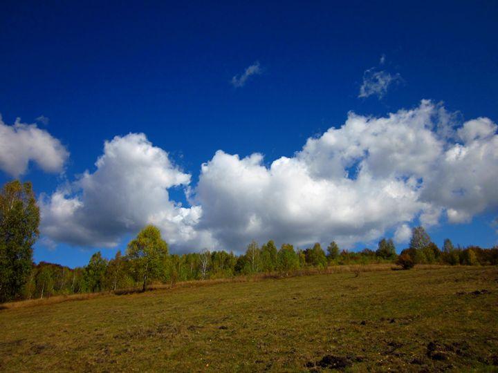 Cloudy landcsape - forstwalker78