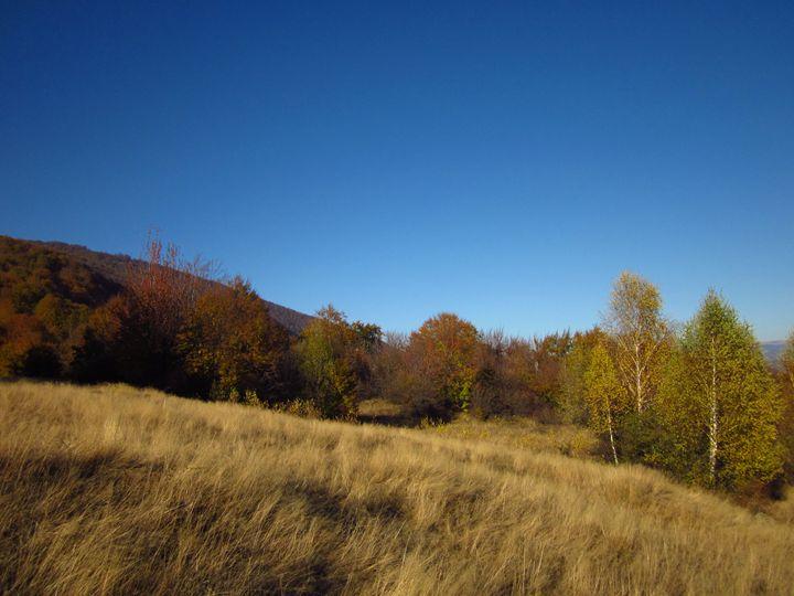 Autumn landscape - forstwalker78