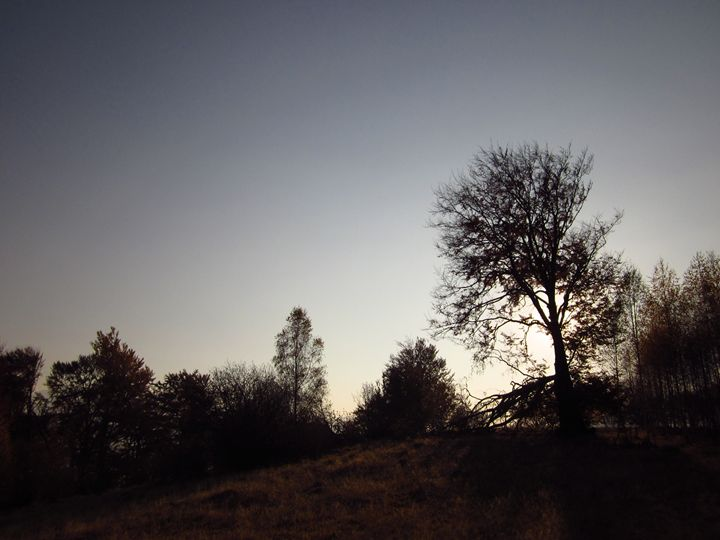 Landscape at sunset - forstwalker78