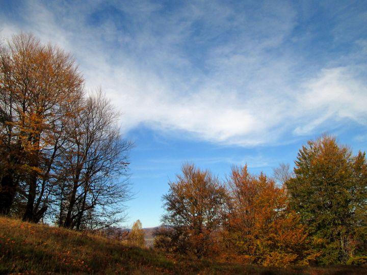 Autumnal landscape - forstwalker78
