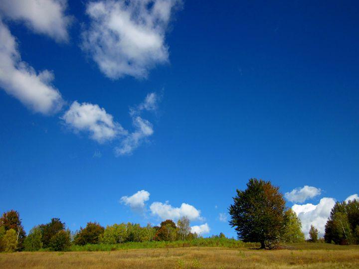 Nature landscape - forstwalker78