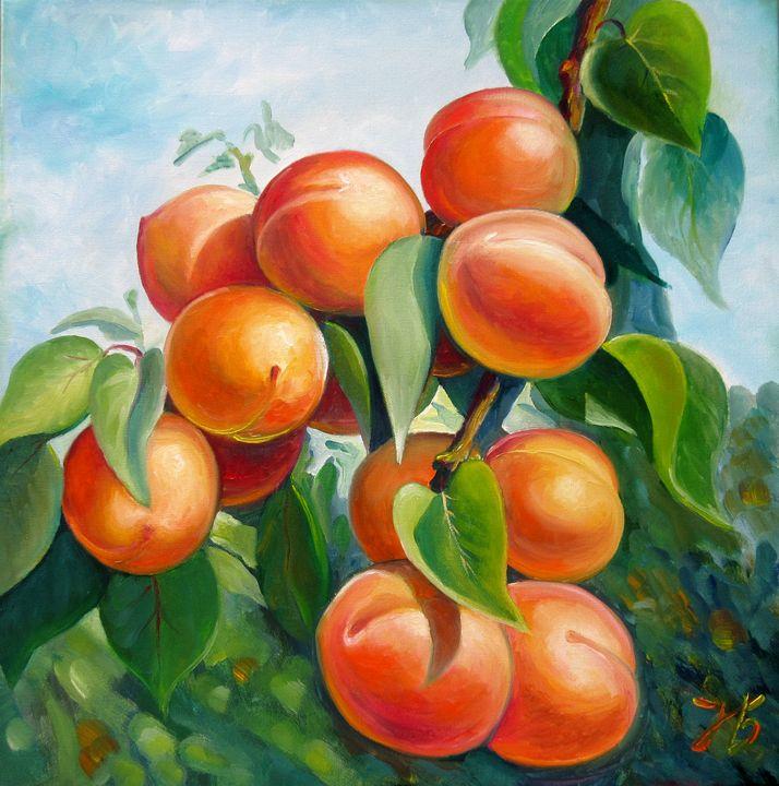 Apricot branch - Nadia Bykova