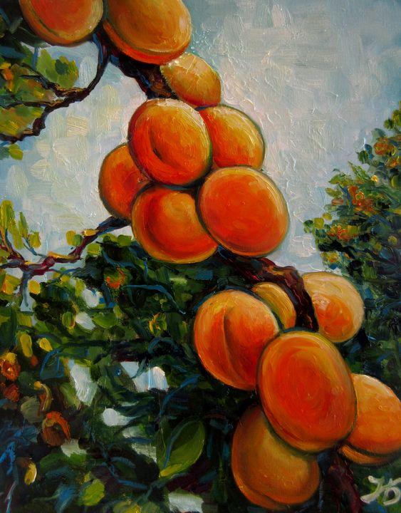 Apricots - Nadia Bykova