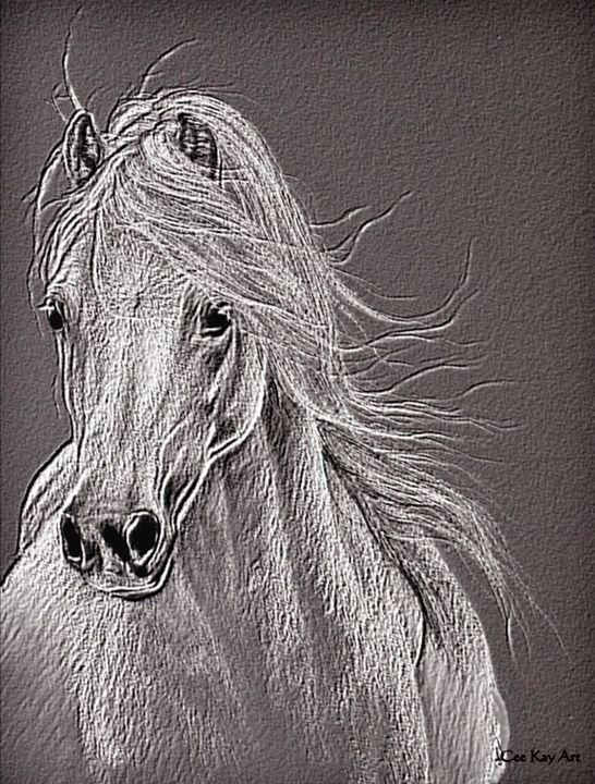 My Little Pony - Cee Kay Creations