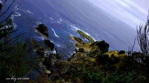 Reaching from the Clifftop: - Cee Kay Creations