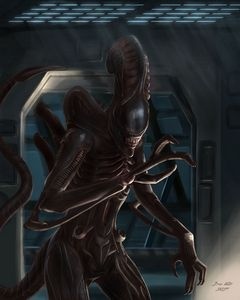 Xenomorph Fan Art