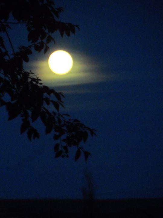 Strawberry Moon - Arletta's Photography