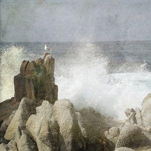 Ocean Spray - Circe Lucas