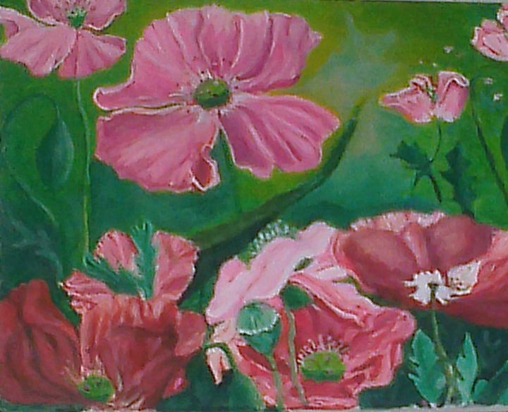 poppies in the garden - deborah saunders