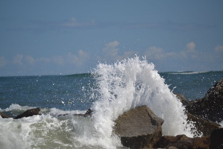 Wave - Fine Art Photography, Nature and More!