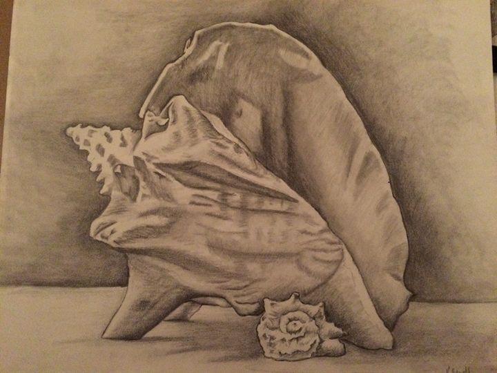 Seashells - Kat's Art