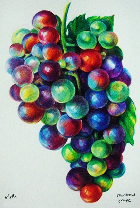 rainbow grape - Studio B.