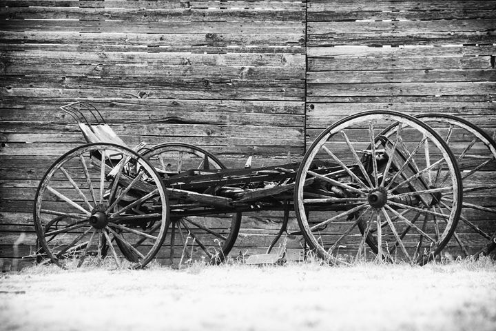 Carriage - Ron Pierce Photography