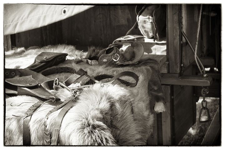 Bridles and holsters - Ron Pierce Photography