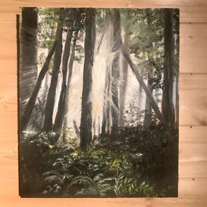 Redwood Forest Light