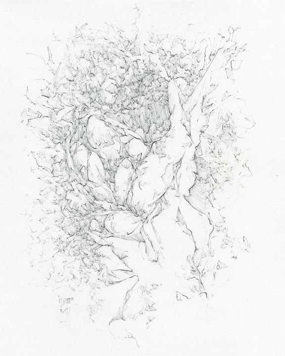 Half - Phil Baril's Art