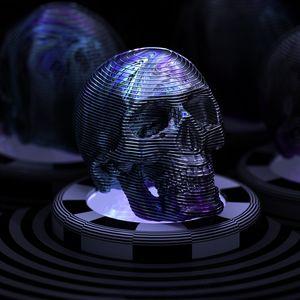 Skull (2 of 3)